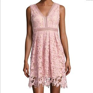 Star Crossed Lovers Deep V Rose Lace Dress